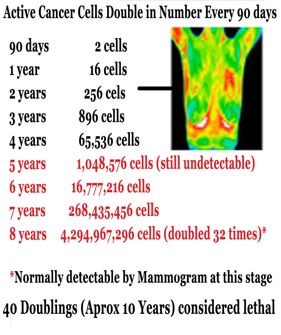 ThermoImages1