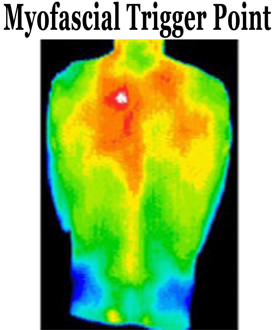 ThermoImages7